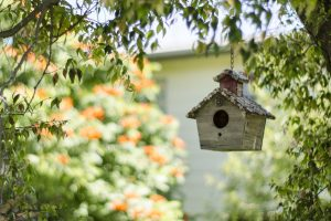 A Hanging Birdhouse