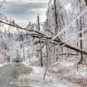 Car drives under dangerous trees weighed down by ice and powerlines after an icestorm. The weight of ice can easily snap power lines and break or bring down power/utility poles split trees in half and turn roads and pavements into lethal sheets of smooth, thick ice