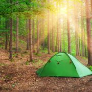 Camping tent in a forest