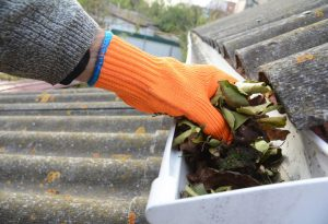 Spring Cleaning, Home Safety, Gutter Cleaning